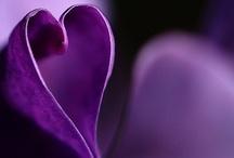 I hate purple