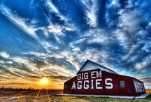 A&M and everything Aggie / by Laura Kennedy