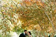 FALL WEDDINGS / Fall wedding ideas for DIY brides from Once Wed and around the web…fall wedding inspiration for flowers, fall bridal and bridesmaid fashion for autumn weddings, fall wedding reception ideas, fall drink ideas, and fall and autumn color schemes for weddings.