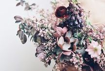 LAVENDER WEDDINGS / Here you'll find images of deep purple weddings, violet wedding ideas, lavender wedding reception ideas, and pictures for lavender inspiration boards sourced from Once Wed and around the web.
