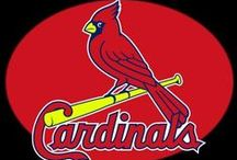 St. Louis Cardinals / by Charlotte Foster