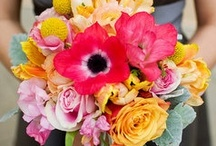 Lovely Bouquets / by Jenna-Ley Jamison