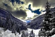Reves d'hiver