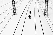 About lines and compositions / by Saija