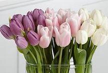 Flowers, Spring is love