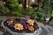 Gardening  / gardening / by Angie Ford