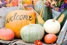 Fall/Halloween/Thanksgiving / by Morgan Smith {California To Carolina}