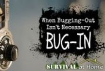 "Gear | Bug In (Hunker Down) / The term ""bugging in"" is the exact opposite of ""bugging out"". When you bug out, you are taking the gear you packed & prepared in your bug out bag &  leaving everything behind, perhaps for good, in order to survive. When you bug in, you are practically fortifying your home & preparing to survive as long as you can BEFORE you have to bug out (which is sometimes inevitable). http://straightforwardprepper.com"