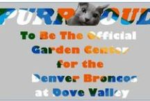 Showing Off Our Team Spirit! / Show your team spirit with orange and blue flowers for your garden from Tagawa Gardens, Proud to be the official garden center of the Denver Broncos at Dove Valley!!