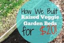 Garden and Yard Reveries / Garden and yard tips and DIY ideas. I WILL have a garden someday, I will, I will!
