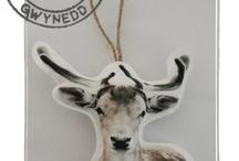 ♥♥oh my deer♥♥
