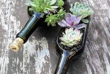 Get Crafty / No one said the fun is over once the bottle is empty. Best ways to reuse your favorite wines