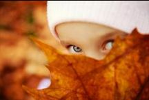 ~ Autumn in the Air ... / outside autumn / by Rita Phillips
