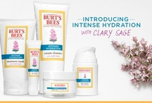 Clary Sage / One of the most beautiful and resilient plants on Earth deserves its own Pinterest board. Meet Clary Sage, the inspiration behind our new Intense Hydration product line. Learn how nature can be your fiercest ally in the fight against dry skin. / by Burt's Bees