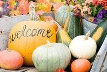 Thanksgiving/Fall (food/crafts/decor)