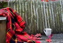 ~ Cozy Corners . . . / by Rita Phillips