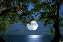 To The Moon / Gotta love the moon.