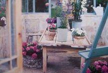 Dream garden ✿