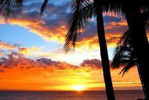 Hawaii Paradise  / by Nicole Amber Tsismanakis