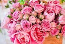 { Floral Fancies }