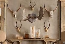 STYLE-#MOUNTAIN / RUSTIC MOUNTAIN STYLE