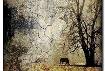 Encaustic Art / Mixed media encaustic art.