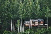 Favorite Places & Spaces / wanderlust central