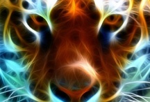 Fractal Art Images / by s kokeshi