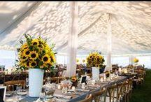 Wedding Tent Design / Wedding, Wedding Tent, Wedding Tent Design, Tent Design, Tent Decor, Wedding Tent Decor, Tent Inspiration, Wedding Tent Inspiration, Tent Style, Wedding Style, Wedding Tent Style, Wedding Details, Wedding Tent Details