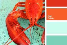 Color palettes ❤️ / Lots of pretty colors