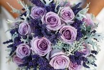 Wedding Bouquets / Beautiful bouquets that all brides dream of holding on their wedding day.