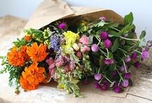 Floral abundance / by Robin Patterson