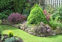 Gardening And Landscaping  / by Janis Sweat