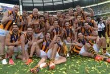 ♂ AFL / Australian Football League, better known as Aussie Rules. A winter sport, and I love it! GO HAWKS.