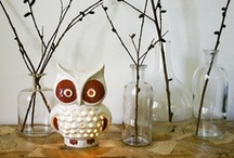 "❝ Hoo! Hoo! ❞   / A board dedicated to all things ""owl""...."