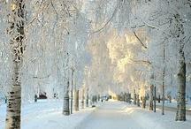 Magic of Winter / Photos of winter magic.....