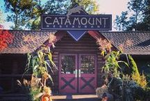 Fall in The Catskills / Looking for fall activities or events in the Catskills? Take a look here!