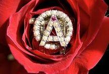 Alpha Alpha Alpha O / by Anna Kelly