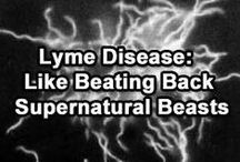 Lyme Disease,  other Chronic Illnesses and Autoimmune Diseasess / Interesting facts about Lyme disease, chronic, and Autoimmune diseases