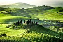 Italia / by Morgan Kelly