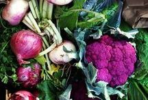 Veg Out / Pictures of our vegetables from farms across Michigan.