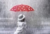 The beauty of an Umbrella / by Carmen Barela