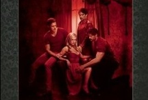 True Blood / The Poster Collection - http://www.insighteditions.com/True-Blood-The-Poster-Collection/dp/1608872203 / by Insight Editions