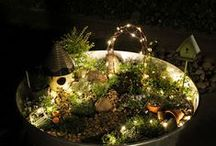 Gardening / by Seasonal Boutique