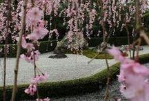 Japan / Where I dream to go ...