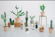 _plantes / Life in green : plants and flowers