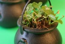 St. Patrick's Day / Gift and crafty ideas for St. Patrick's Day