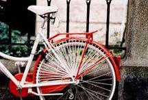 Bikes / by Brandie