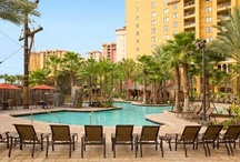 Orlando Family Vacation / Wyndham Bonnet Creek Resort is mere minutes from the gates of Disney World and makes a great home-base for your family during your Orlando vacation