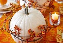Fall Wedding / by Jen Putnam